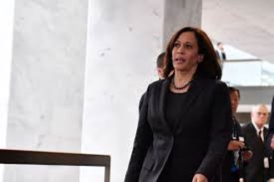Kamala Harris Insults Democrats