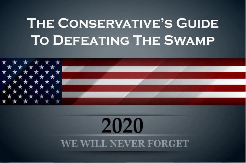 The Conservative's Guide to Defeating The Swamp
