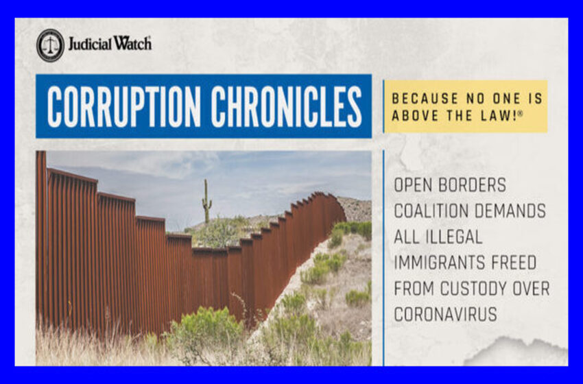 Open Borders Coalition Demands All Illegal Immigrants Freed from Custody Over Coronavirus