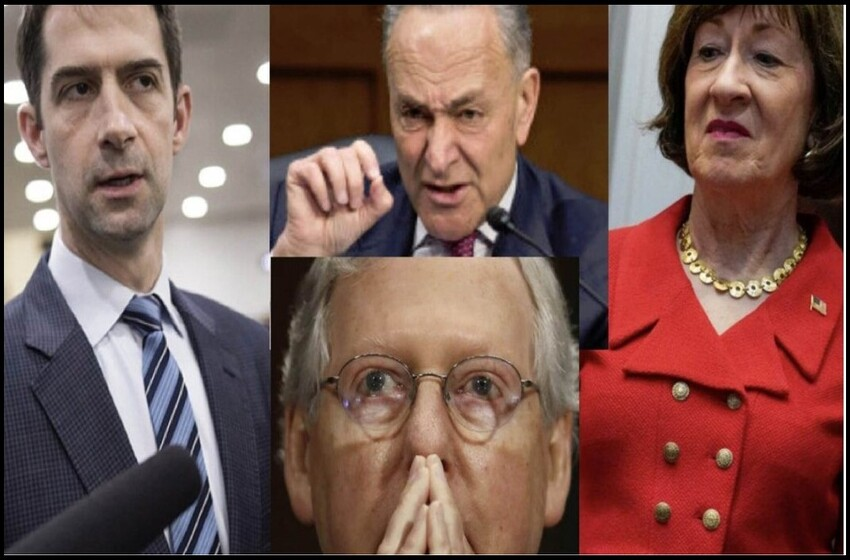 Report: Senate Chamber Boils Over, Collins Gets in Schumer's Face, Cotton Unleashes Profanity