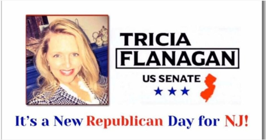 SENATE CANDIDATE TRICIA FLANAGAN's HEALTHCARE CURES ISSUES AILING VOTERS; JOBS, HEALTHCARE & TAXES