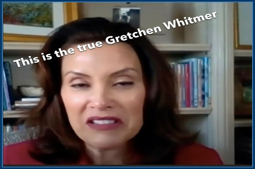 "Governor Gretchen Whitmer, ""They're domestic terrorists"""