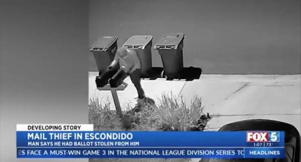 WATCH: Thief Caught on Surveillance Video Grabbing Mail, Election Ballots From People's Mailboxes in San Diego, California