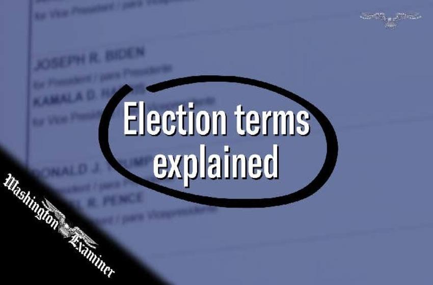 Audit? Canvas? What do all these election terms mean?