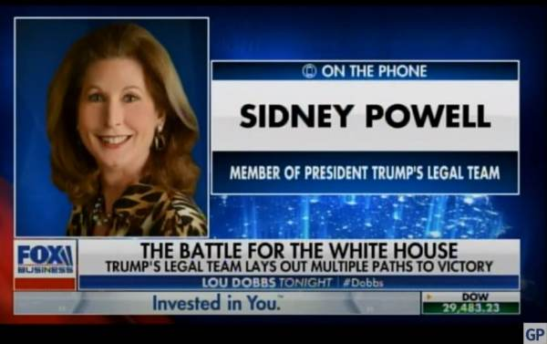 """""""Should Be Scads of Evidence of Frankly an International Criminal Conspiracy"""" – WOW! –  ATTORNEY SIDNEY POWELL on Confiscated Servers in Germany (VIDEO)"""