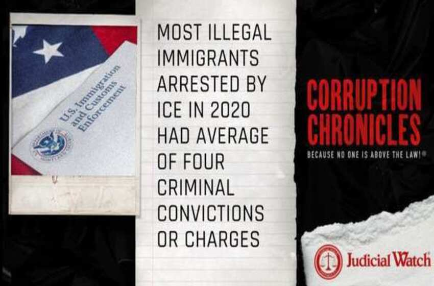 Most Illegal Immigrants Arrested by ICE in 2020 Had Average of Four Criminal Convictions or Charges
