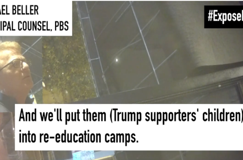 PBS lawyer seen on video calling for children of Republicans to be put in reeducation camps