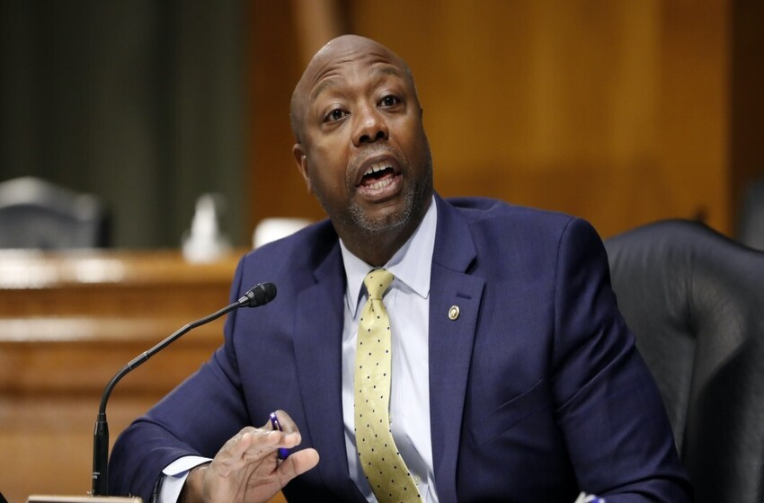 Tim Scott says Trump is 'simply not guilty' of inciting an insurrection: 'The one person I don't blame is President Trump'