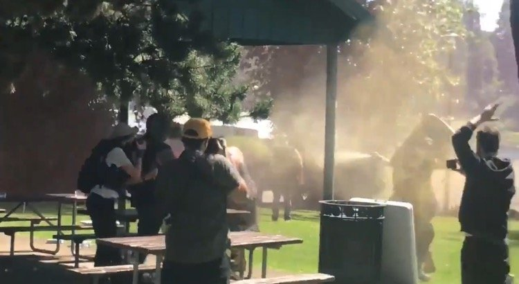 Oregon Police Declare Riot as Chaotic Brawl Breaks Out Between Proud Boys and Antifa at Park Near Portland (VIDEO)