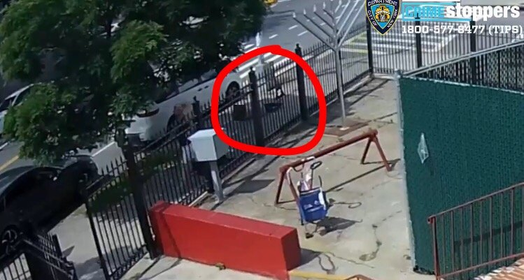 76-Year-Old Woman Seriously Injured After Being Shoved to the Ground in Unprovoked Attack in New York City (VIDEO)
