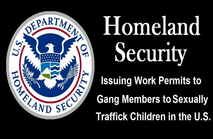 DHS Insider Blows Whistle on Int'l Child Sex Trafficking Gangs Exploiting 'Reasonable Fear' Loophole