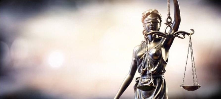 ANN VANDERSTEEL STEEL TRUTH – THOMAS RENZ ,OUR LEGAL SYSTEM